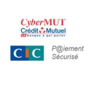 cybermut-cic6.png